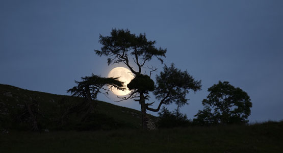 Moon rising above Barr-beithe
