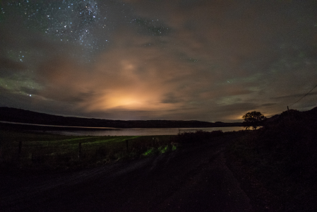 stars and lights in the night sky, a loch and a tree